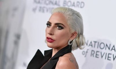 Lady Gaga Is Offering $500,000 As A Reward To The Person Who Has Her Dogs