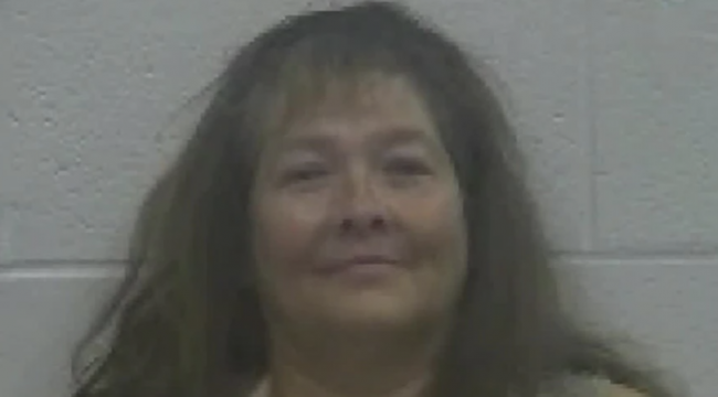 Ludlow Woman Arrested After She Faked Having A Baby To Get Welfare Benefits